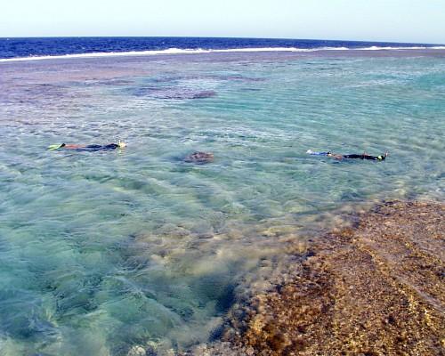 Nuotare con maschera e pinne - El Quseir - snorkeling
