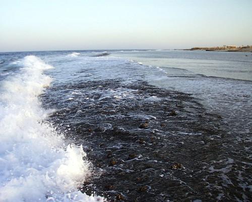 Nuotare con maschera e pinne - El Quseir - barriera corallina