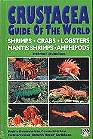Crustacea guide of the world – Shrimps, crabs, lobsters, mantis shrimps, amphipods