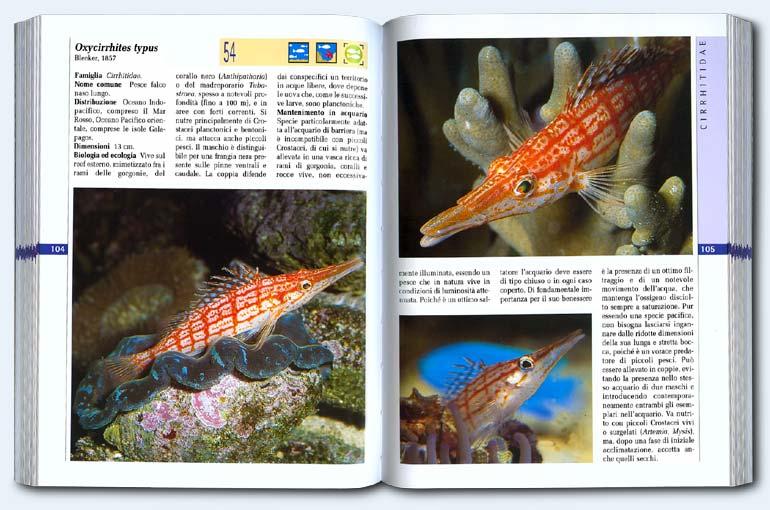 Bibliografia - Pesci marini tropicali d'acquario - pagina interna