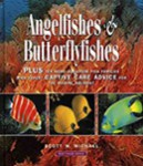 Reef Fishes Vol.3